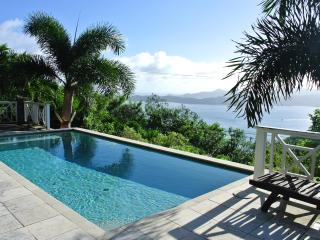 Glamorous Villa on Tortola British Virgin Islands! - Great Camanoe Island vacation rentals