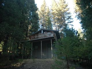 Mendonca (A forest Walk) - Dorrington vacation rentals