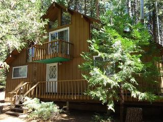 Forest Friends - Arnold vacation rentals