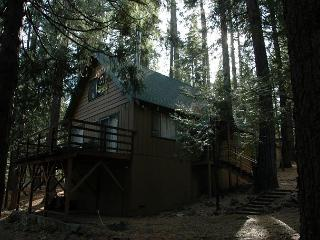 Hicks Tree Fort - Dorrington vacation rentals