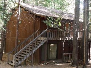 Conlan Cabin - Pinecrest vacation rentals