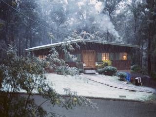 Mountain Gum Chalet - Ski Chalet - Mt Buller vacation rentals