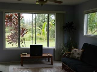 Quaint and Quite Ohana, studio/ Jr. 1 Bedroom, with garage and gear. - Pahoa vacation rentals