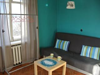 Sunny artistic place - Saint Petersburg vacation rentals