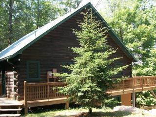 Mountain Cabin Getaway Dillard, GA Sleeps 12 - Rabun Gap vacation rentals