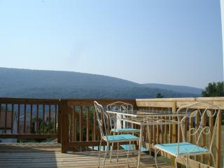 Two Rivers Guest House - West Virginia vacation rentals