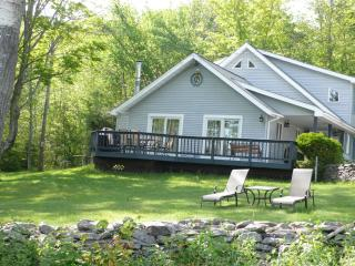 Catskill Mountain View House, Belleayre, Fire Pit! - Stamford vacation rentals