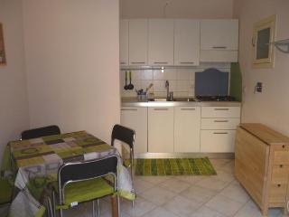 Rear Window-Small apt in center - up to 4 people - Torino Province vacation rentals