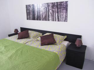 Dunajska Easy Ap.+parking+garden - Ljubljana vacation rentals
