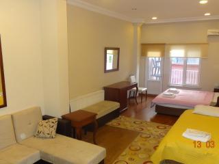 clean,comfortable,& cozy flat in harbiye (taksim) - Istanbul vacation rentals