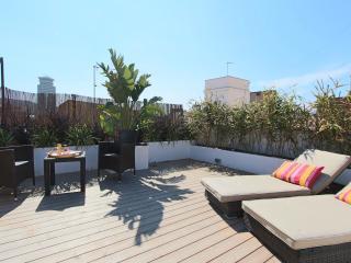 Gaudi penthouse - Barrio gotico - Barcelona vacation rentals