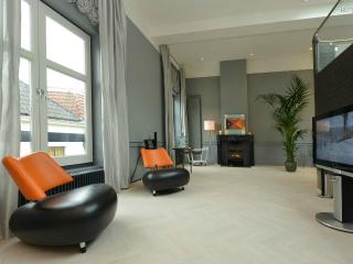 Beautiful luxurious loft in old town center Haarlem - North Holland vacation rentals