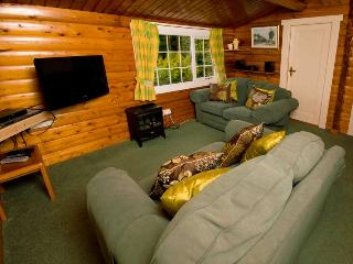 Ty Coed Log Cabin Overlooking Mountains + Forests - Trawsfynydd vacation rentals