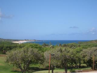 Ke Nani Kai 226 Beach & Ocean view Condo - Maunaloa vacation rentals