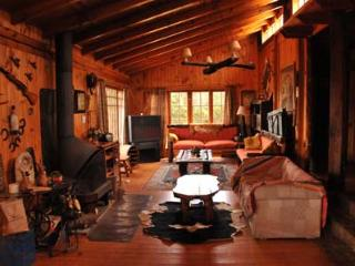 Cabin style home on the central coast of Chile - Algarrobo vacation rentals