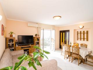 Fine & Spacious Flat near Dubrovnik - Mlini vacation rentals