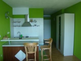 Green apartment (2 pax) - Apartments Dalmatin - Viganj - rentals