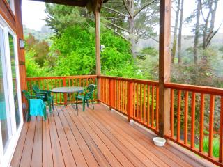 1b Retreat, Woodland Vus, Hike2 2Beachs, 10min 2sf - Mill Valley vacation rentals