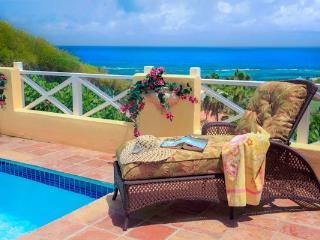 Private pool in your own luxury villa courtyard ! - Christiansted vacation rentals