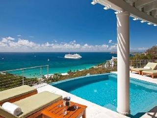 Modern villa Palms at Morningstar with infinity pool & ocean views a short drive to the beach - Frenchman's Bay vacation rentals