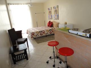 Studio near Avenue Paulista - Aruja vacation rentals