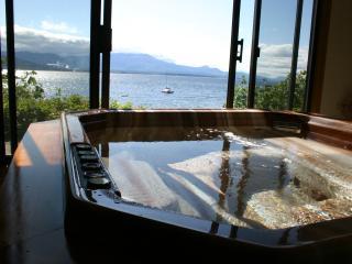 Oceanfront suite Vesuvius Beach, Salt Spring Isl - Salt Spring Island vacation rentals