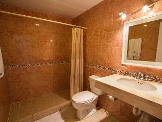 BEAUTIFUL CONDO IN PUERTO AVENTURAS , JACUZZI, POOL WITH HARBOR VIEW. - Guerrero vacation rentals