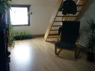 Appartement to rent in the centre of Ghent - East Flanders vacation rentals
