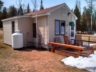 Million Dollar View Cottage - Onaway vacation rentals