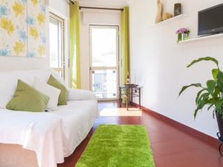 Green House -  Sesimbra beach - Sesimbra vacation rentals