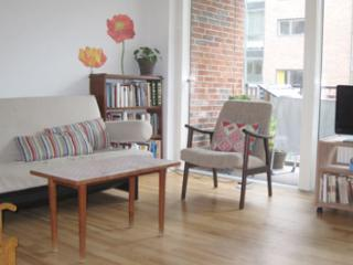 Large & new Copenhagen apartment at Islands Brygge - Denmark vacation rentals