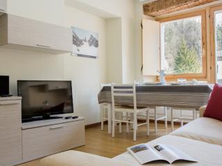 Sorapis - 3453 - Perarolo di Cadore - Sappada vacation rentals