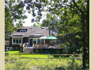 DUNBJ -  Beach House at Long Point,  Located Just 2 Miles from Gorgeous Long Point Beach,  Newly Updated Interior, Ceiling Fans All Rooms, AC Bedrooms, Spacious Decks - West Tisbury vacation rentals