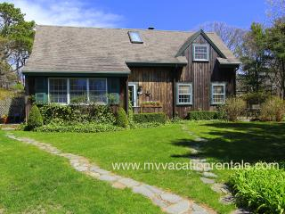 BREER - Country Cape, Walk or Bike to Village Area, Large Private Patio, Manicured Yard - Edgartown vacation rentals