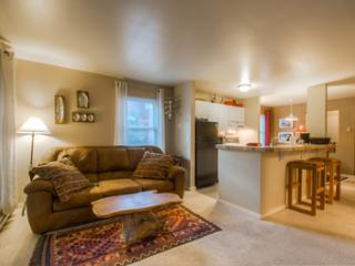 Fall Line #110 (2 bedrooms, 1 bathroom) - Telluride vacation rentals