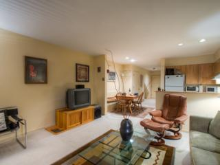 Muscatel Flats #20 (1 bedroom, 1 bathroom) - Telluride vacation rentals