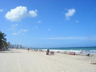 Beach + hip, eclectic San Juan - San Juan vacation rentals