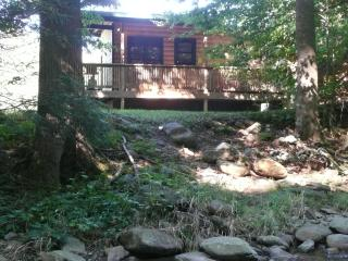 Helton Creek Guest Cabin - Lansing vacation rentals