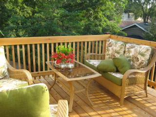Cozy 1Br Apt with Balcony on Light Rail - New Hope vacation rentals