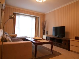 2BD 2BTH (3Beds) Fully Serviced Apartments-Central Business District #4 - Beijing vacation rentals