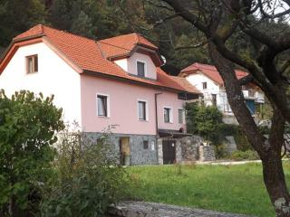 Superb Apartment in Stunning Upper Savinja Valley - Nazarje vacation rentals