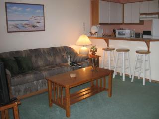 Sandpiper 8 of Friday Harbor (One-bedroom) - Friday Harbor vacation rentals