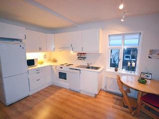 Ocean House II - Reykjavik vacation rentals