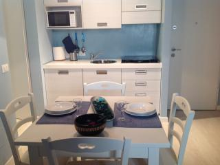 BLUE APARTMENT - Florence vacation rentals