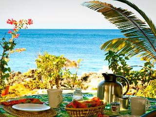 Beautiful & Updated Seafront Cottage-SPECIAL OFFER - Negril vacation rentals