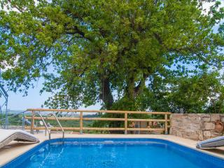 Luxury Cretan villa with private salted pool - Chania vacation rentals