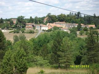 FRANCE  DORDOGNE  Perigord for 10 - Nontron vacation rentals
