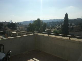 spacious apartment in rehavia - Jerusalem vacation rentals
