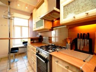Luxury Spacious City Centre Living with IR-Sauna - Russia vacation rentals