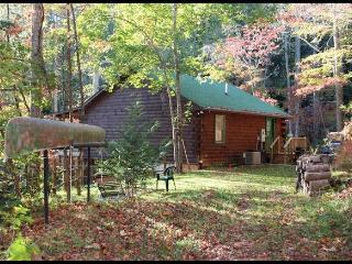 Private cabin, lake access, kayaks, canoes, Pets - Bryson City vacation rentals
